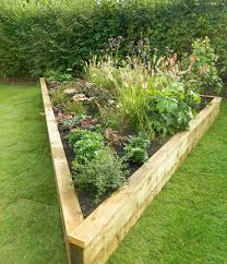how to plant your own vegetable garden live bio