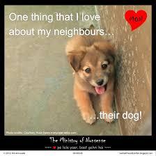 Nonsense Meme - neighbour s dog meme the ministry of nonsense by msahluwalia on