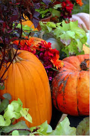 fall pictures with pumpkins for desktop 1025 best wallpapers for my phone images on pinterest iphone