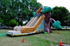 tree house slide palmetto amusements event planning and party