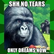 Gorilla Munch Meme - gorilla munch gorilla meme generator