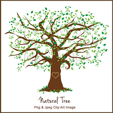 clipart tree clipart elm tree graphics white oak maple tree