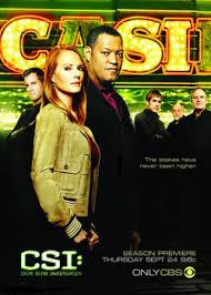 Baixar CSI: Las Vegas 10ª Temporada Download Grátis