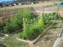 Wacky Garden Ideas Wacky Garden Ideas Greenfain