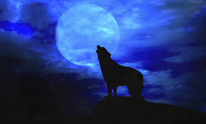 wolf moon 2017 meaning and where to it live
