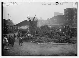 mark carr the first new york city christmas tree seller and the