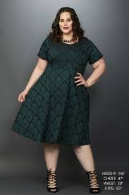 plus size clothing for women waverly street skater dress dark