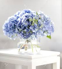 Square Vase Flower Arrangements Bouquet Hortensia Banque D U0027images Et Photos Libres De Droits