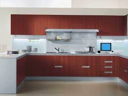 horrible illustration exceptional high end kitchen cabinets