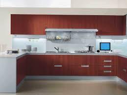 Kitchen Cabinets Design Pictures Superb Model Of Infatuate Kitchen Cabinet Design Diy Tags