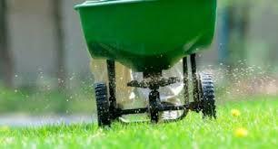 concimazione tappeto erboso curare il prato in primavera