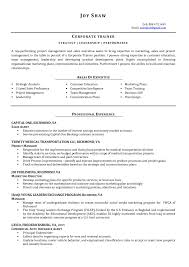 simple resume sle for job technical trainer resume sle resumes templates technical trainer