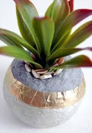 Concrete Succulent Planter Faux Concrete Succulent Planters The Scrap Shoppe
