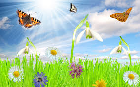 37 top selection of free spring wallpaper