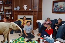 in the livingroom the elephant in the living room part i diocese of st benedict