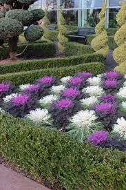 Fake Bushes Fake Outdoor Plants Two Prepotted 4u0027 Spiral Boxwood