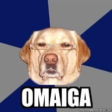 Omaiga Meme - omaiga meme perro meme best of the funny meme