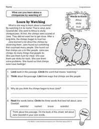 silverback gorilla facts worksheets daycare ideas and homeschool