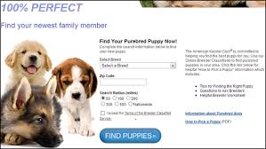 australian shepherd your purebred puppy 10 puppy finding services to find your next best friend