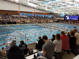 Ohio Wild Swimming images Central ohio swimming association home facebook