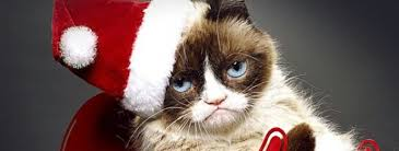 Christmas Is Coming Meme - christmas is coming early first trailer for grumpy cat s worst