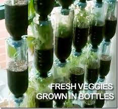 recycled plastic bottles u003d awesome vertical vegetable garden
