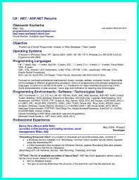 Programmer Resume Example by Computer Programmer Resume Has Some Paragraphs That Focuses On The