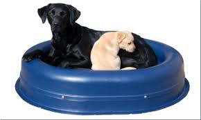 tough dog beds chewproof dog bed reviews
