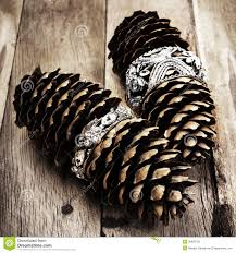 christmas pine cone on wooden background with decorations chris