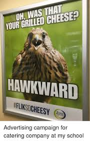Hawkward Meme - oh was that your grilled cheesea hawkward fliksocheesy ood cus