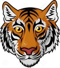 cartoon tiger face tiger head mascot team sport cartoon royalty