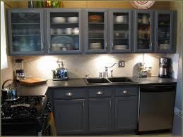 Kitchen Cabinet Insert Cabinet Taking Door Off Kitchen Cabinet Kitchen Cabinets