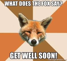 What Did The Fox Say Meme - get well fox meme well best of the funny meme