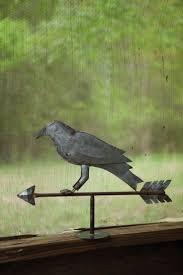 best 25 crow or raven ideas on pinterest crows ravens ravens