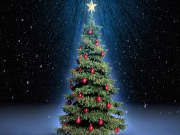 free download christmas tree hd wallpapers for ipad tips and