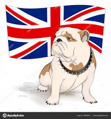 british bulldog on a background of the british flag u2014 stock vector