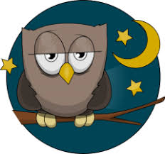 Seeking Vimeo Vimeo Seeking Home Based Owl Community Moderator Work At
