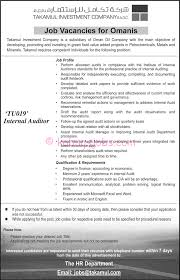 Senior Auditor Resume Sample by Internal Auditor Resume Sample Free Resume Example And Writing