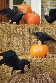 Neighborhood Halloween Party Ideas 927 Best Halloween Haven Images On Pinterest Halloween Crafts