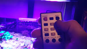 sb reef lights review sb reef lights sbox pro timer instructions youtube