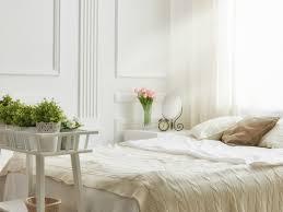 White Bedroom Plants 5 Bedroom Plants To Help You Sleep Better The Sleep Matters Club