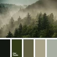 best 25 green color schemes ideas on pinterest green colors