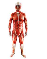 Bodybuilder Halloween Costumes Muscular Halloween Costumes Promotion Shop Promotional