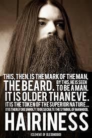 Beard Meme - 14 best moustache beard memes images on pinterest moustaches