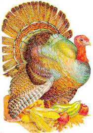 turkeys the thanksgiving tradition