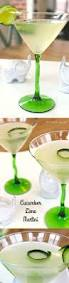 best 25 cucumber vodka ideas on pinterest cucumber vodka drinks