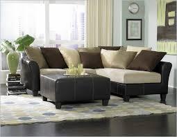 Sleeper Sofa Small Spaces Living Room Sleeper Sofa Sectionals Sofa Wonderful Sleeper Sofa