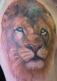 83 lovely lion shoulder tattoos