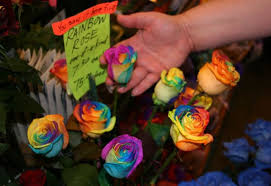 tie dye roses how to grow a rainbow naturally pickchur
