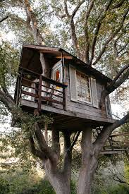 497 best treehouses images on pinterest treehouses trees and homes